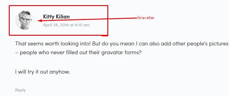 default Gravatar on WordPress